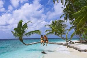 райский остров скачать игру - фото 7