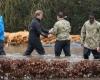 Королевская семья Великобритании оказывает помощь пострадавшим от наводнения