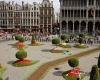 В Брюсселе открылась выставка цветов