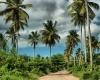Климат Доминиканы по месяцам - изучаем с Чениной Евгенией