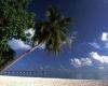 Мальдивы Сан Айленд приглашает в элегантно оформленные номера