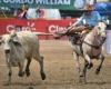 Фестиваль колео  или кто сильнее дернет быка за хвост