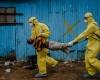 Число жертв лихорадки Эбола превысило шесть тысяч