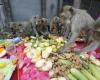 Пир для обезьян в Таиланде