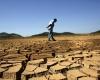 Бразильский город Сан-Паулу подвергся худшей за всю историю засухе