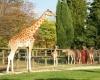 Новый Парижский зоопарк открылся