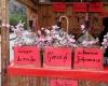 Фестиваль Tree Blossom в Вердере ожидает гостей