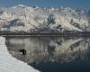 Снежные лавины привели к гибели 14 человек в Кашмире
