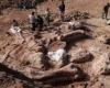 Кости гигантского динозавра были найдены в Аргентине