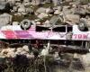 Автобус в Индии упал с высоты 300 метров