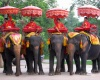 Таиланд ужесточит миграционные правила для иностранных туристов