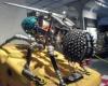 В Сингапуре прошла уникальная выставка роботов-животных