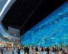 Загляните внутрь крупнейшего торгового центра в мире