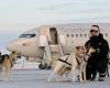 Аэропорт Норвегии запускает первое такси на собачьих упряжках
