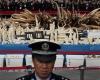 В Китае уничтожили шесть тонн слоновой кости