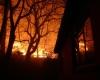 В Австралии горят леса: пожарные не справляются