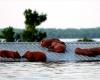 В Сан-Антонио ожидается наводнение