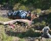 27 человек погибли в результате ДТП в Индии