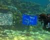 В Австралии открылась первая подводная галерея