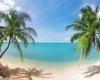 Лучшие отели и рестораны на острове Самуи
