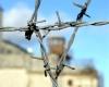 Более 500 заключенных сбежали из тюрем в Ираке