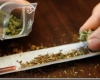 В Уругвае легализируют производство марихуаны