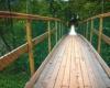 В Висимском заповеднике появилась подвесная туристическая тропа