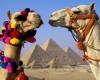 Горящие путевки в Египет на двоих возможно купить за несколько дней до вылета