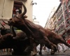 Испанец погиб на фестивале во время забега быков