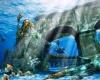 В Дубае откроется крупнейший в мире подводный парк