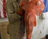 Турист поймал гигантскую двухсотлетнюю рыбу