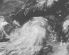 Китай: в результате тайфуна пострадало 7 млн. людей