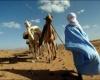 Ливия привлекает Запад финансовыми перспективами