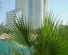 В ОАЭ Фуджейра отели самые красивые