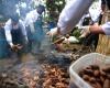 Искусство приготовления пищи в Перу