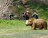 Камчатский экотуризм начинает развиваться